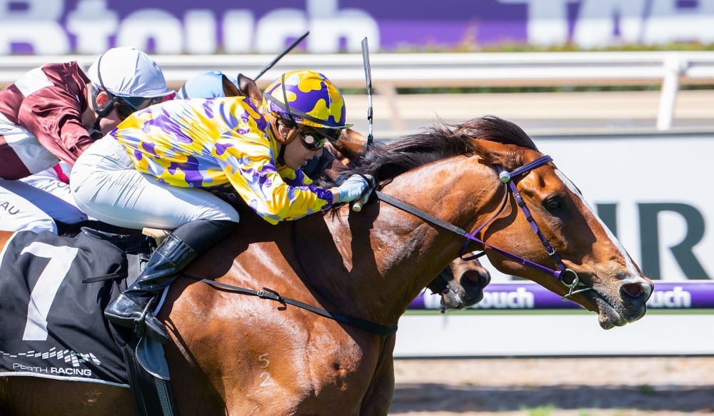 Juicing Carrots Fights Back From Near Death To Contest Perth Cup. thumbnail