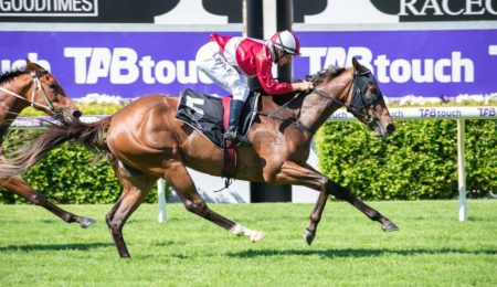 An Early Look – Belgravia Stakes thumbnail