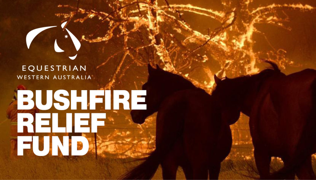 Equestrian Industry raises funds for Bushfire Affected Community thumbnail
