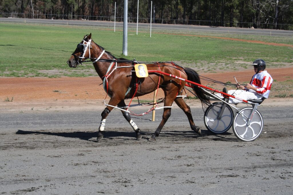 Bridgetown Harness Racing Club and Community TAB to fundraise for local school thumbnail