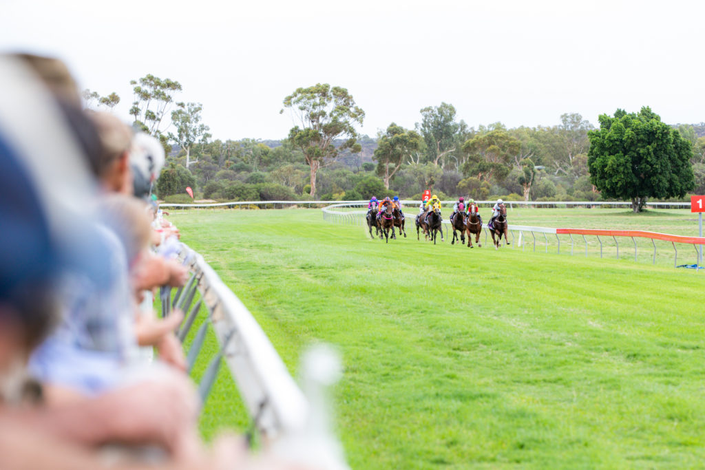 Mingenew Race Club and Community TAB to fundraise for local school thumbnail