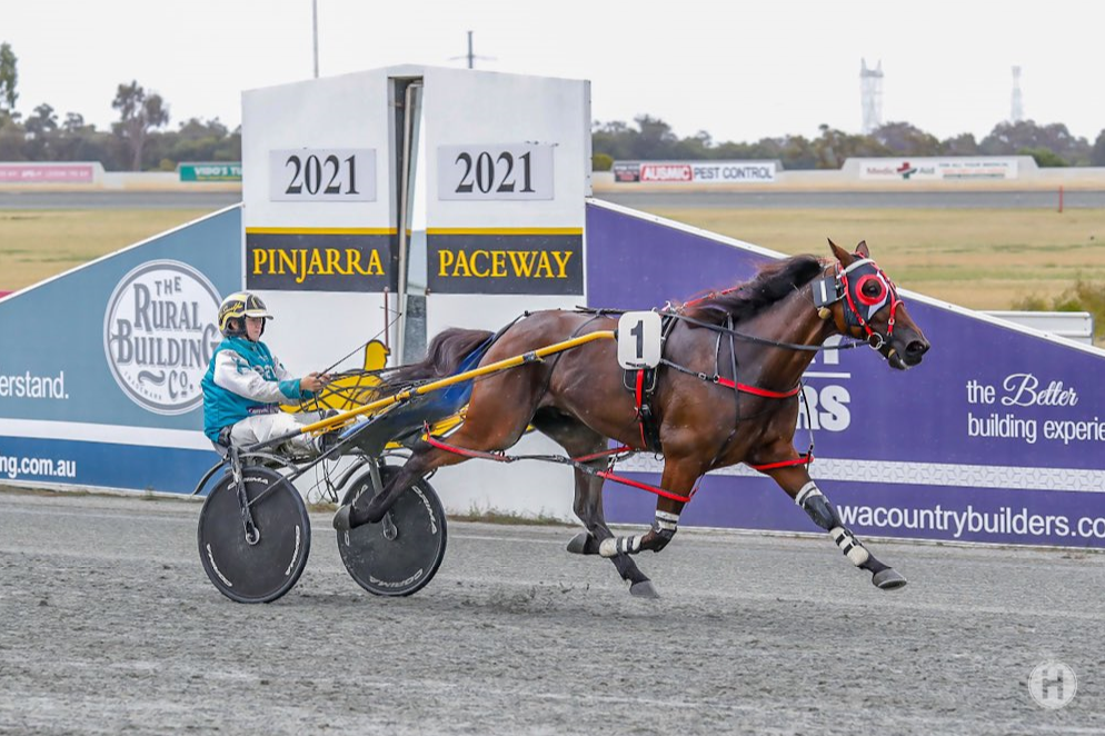 Pinjarra Harness Racing Club and Community TAB to fundraise for Ovarian Cancer Research thumbnail