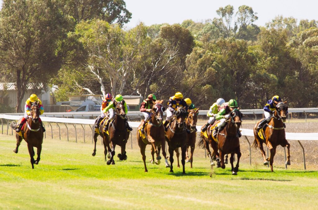 Dongara Irwin Race Club and Community TAB to fundraise for local community groups thumbnail