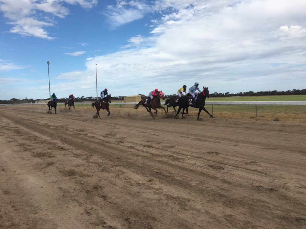 Pingrup Race Club and Community TAB to fundraise for local school thumbnail