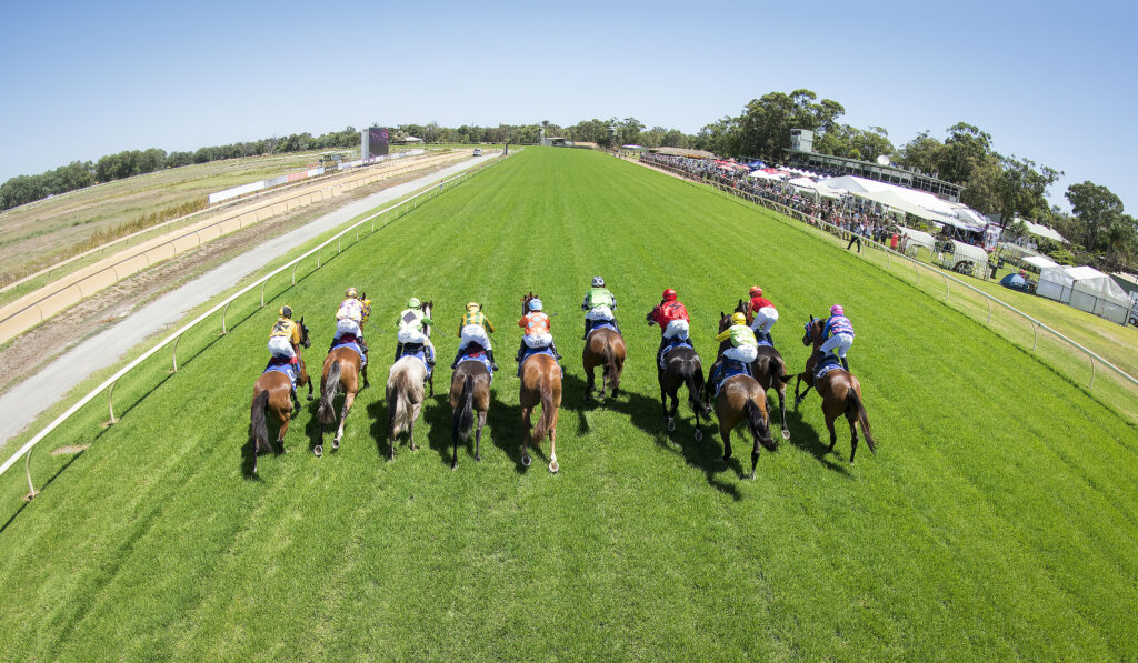 Pinjarra Race Club and Community TAB to fundraise for local Football and Netball Club thumbnail