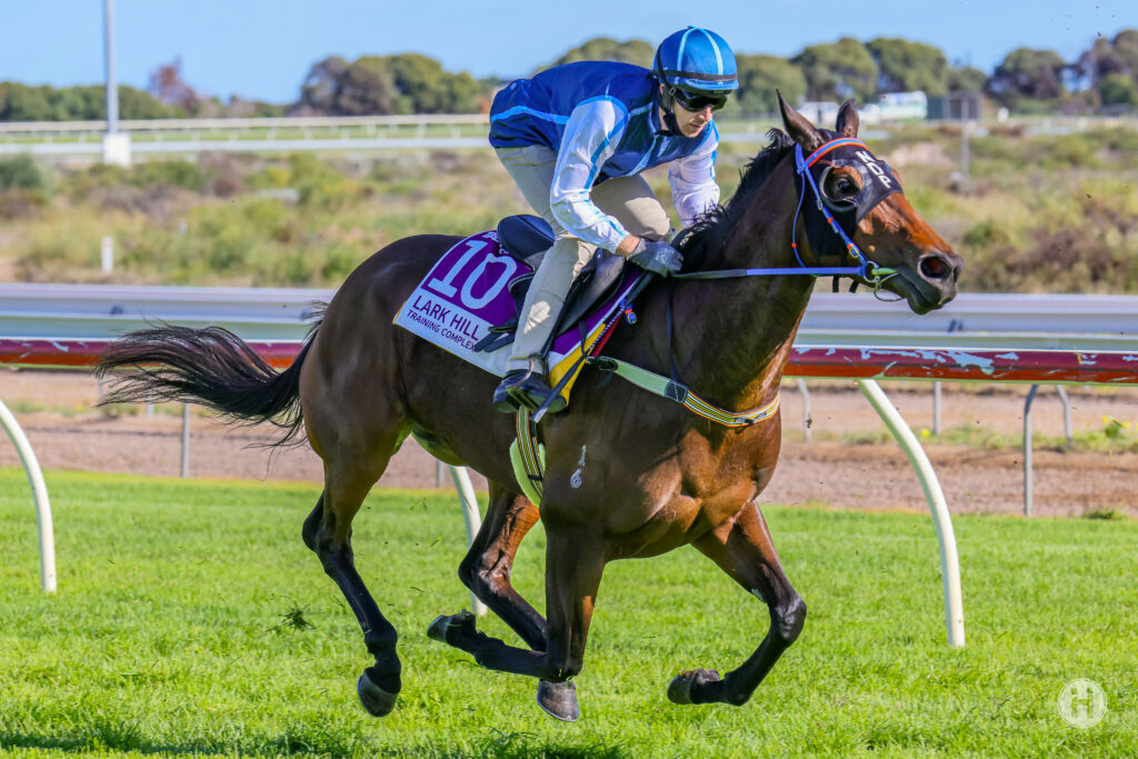 No Concerns Over Kay Cee After Trial Says Parnham thumbnail