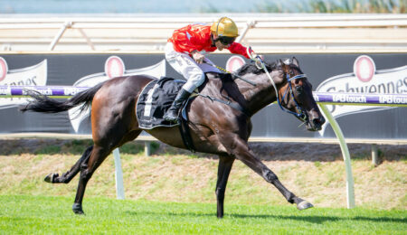 Dance Music In The Groove For Strickland Stakes Says Miller thumbnail