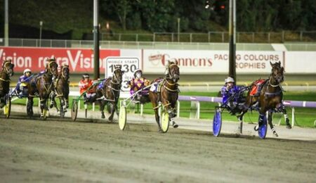 Westbred Barrier Draws: Floewriter Gets Chance To Go One Better thumbnail