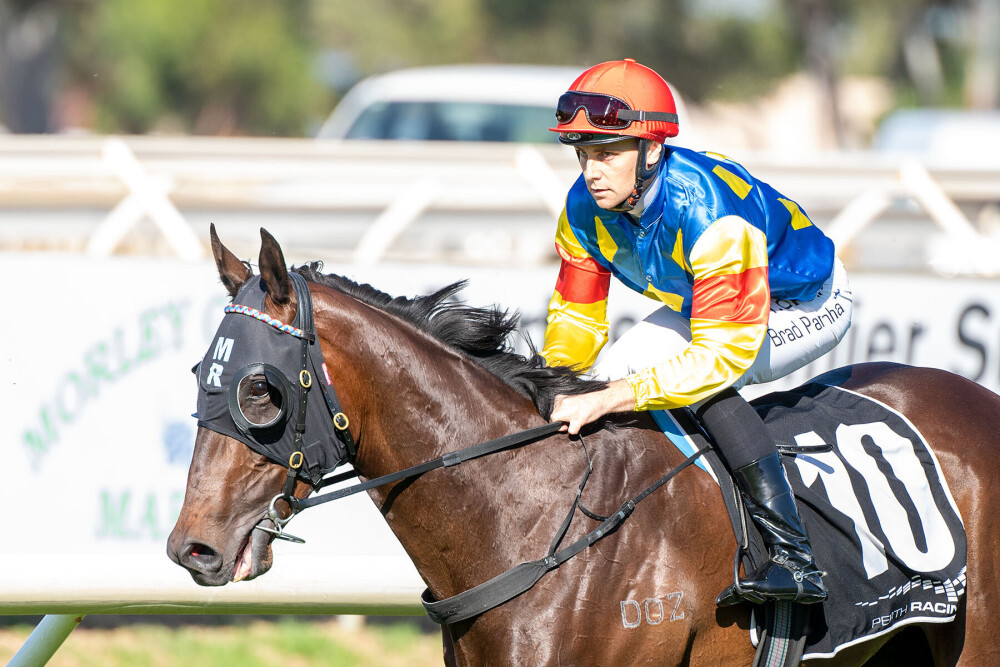 Morton's Forgotten Horse In Raconteur Stakes thumbnail