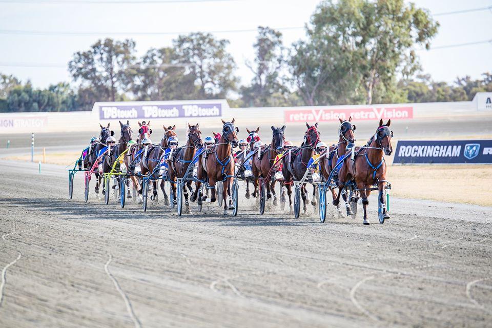 Pinjarra Harness Racing Club – Annual Stallion Service Tenders thumbnail