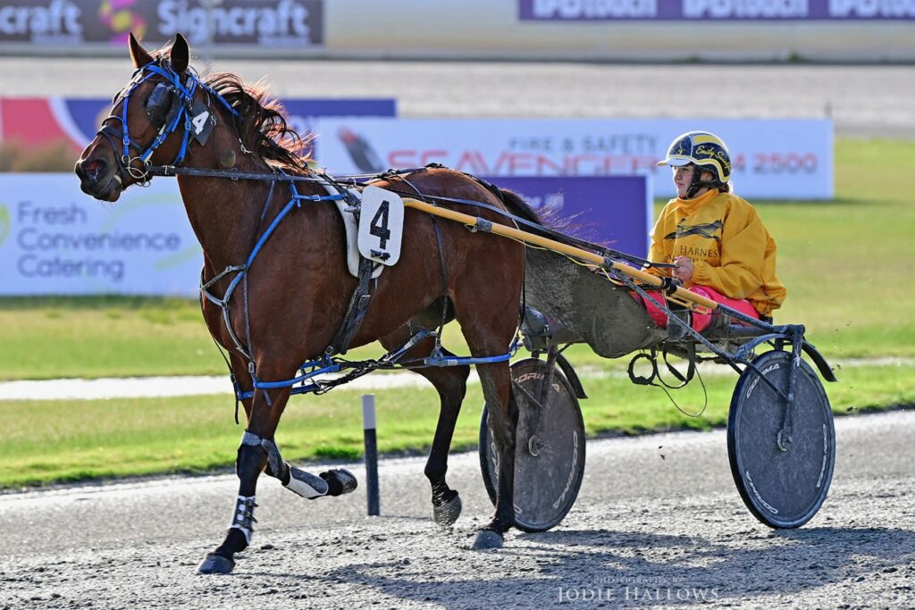 Turvey and Suvaljko Team Up To Take Out The Daintys Daughter Classic thumbnail