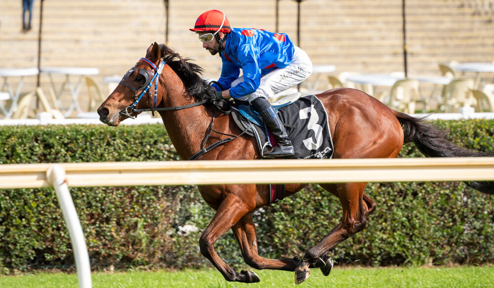 Ascot Carnival Unlikely For Winter Star thumbnail