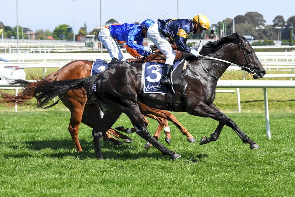 Ranting To Lock In Winterbottom Stakes thumbnail