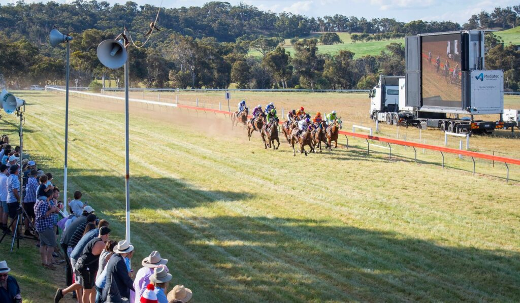 Local groups are runaway winners at the Toodyay races thumbnail