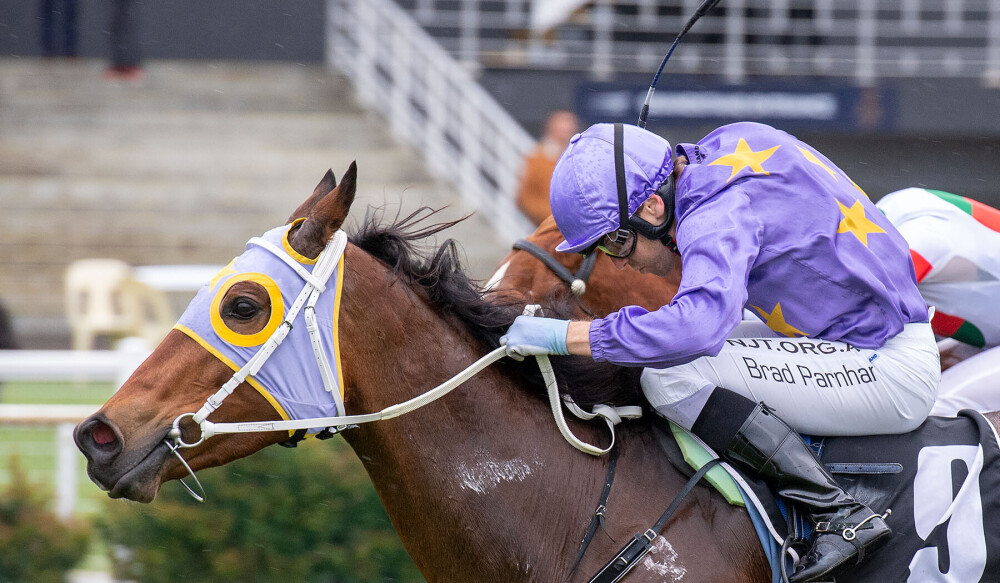 No Laughing Matter For McGruddy In Northam Cup thumbnail